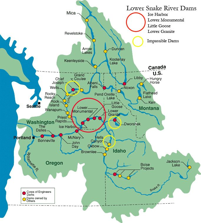 Major Dams On The Columbia River Snake River And Main Tributaries Highlighting The Lower