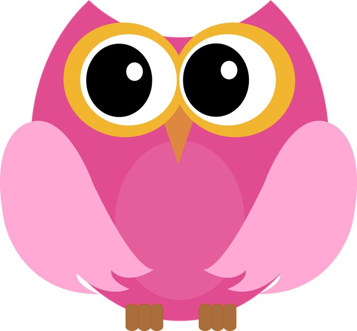 455 best images about owl coruja on pinterest cartoon for Owl fish store