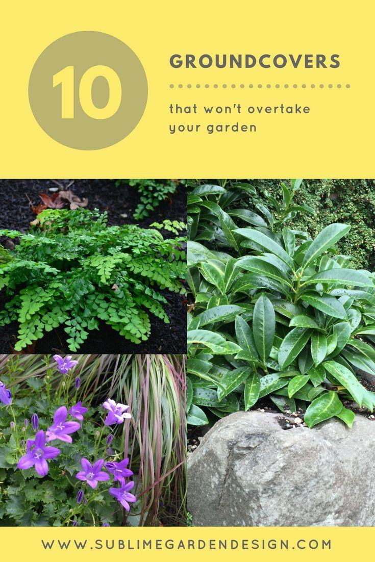 136 best sublime garden design images on pinterest landscape