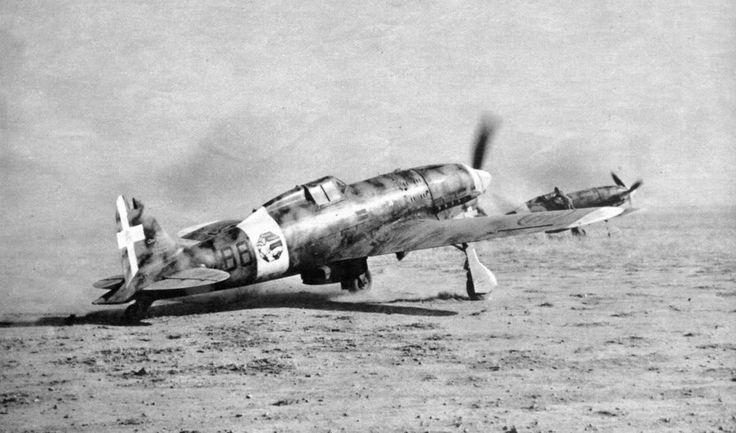 Macchi MC.202, 88° Squadriglia, Gambut, 1941