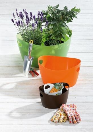 Miska Bottichelli niemieckiej marki Koziol. Produkt został wykonany z tworzywa sztucznego.  Produkt dostępny jest w kilku wersjach kolorystycznych i kilku rozmiarach.