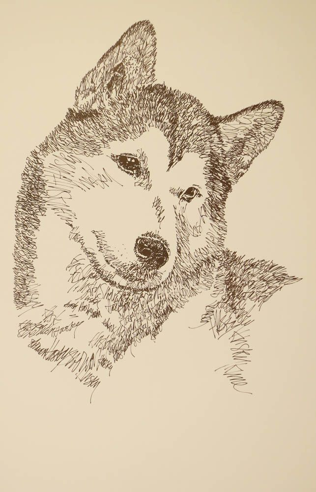 Siberian Husky: Dog Art Portrait by Stephen Kline, art drawn entirely from the words Siberian Husky. He also can add your dog's name into the lithograph. - drawDOGS.com : drawdogs.com His collectors number in the thousands from over 20 countries and every state in the US. Kline's dog art has generated tens of thousands of dollars for dog rescues worldwide. http://drawdogs.com/product/dog-art/siberian-husky-dog-portrait-by-stephen-kline/