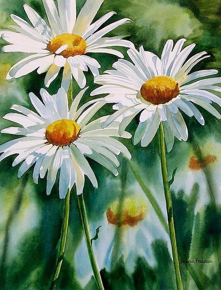 Cuadros Modernos Pinturas y Dibujos : Cuadros de Flores Blancas Pintados con Acuarelas