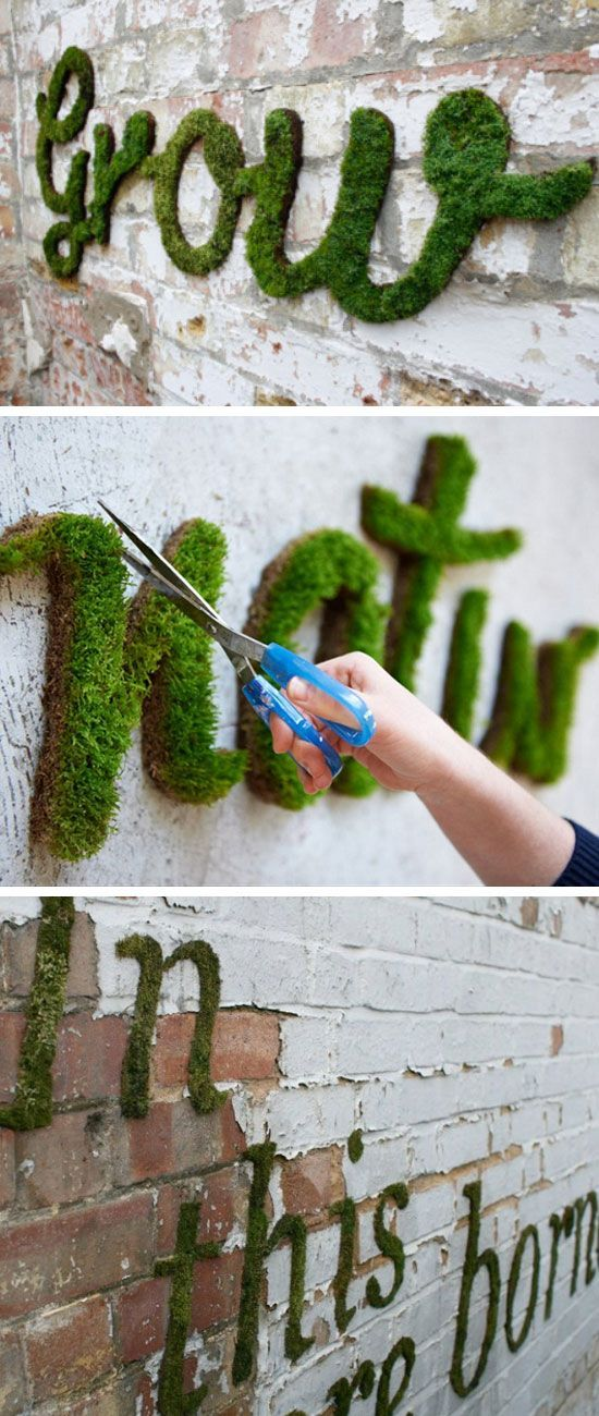 Make Your Own Moss Graffiti | Ingredients: 1 can of beer 1/2 teaspoon sugar Several clumps of garden moss Equipment: Recycled plastic container with lid Blender Paintbrush Stencil with your design Crumble the moss into the blender. Add the beer and sugar and blend just long enough to create a smooth, creamy consistency. Now pour the mixture into the plastic container. Paint the moss blend onto a damp and shady wall, either free-hand or using a stencil #gardenideasdiy