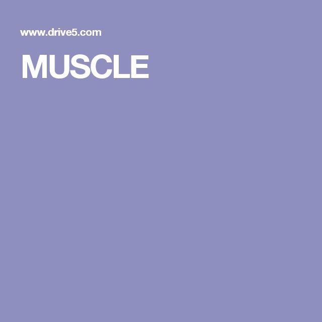 MUSCLE is one of the best-performing multiple alignment programs according to published benchmark tests, with accuracy and speed that are consistently better than CLUSTALW. MUSCLE can align hundreds of sequences in seconds. Most users learn everything they need to know about MUSCLE in a few minutes—only a handful of command-line options are needed to perform common alignment tasks.