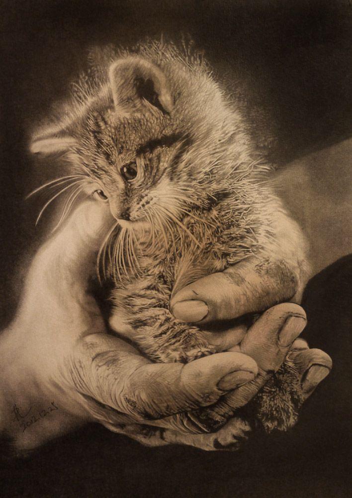 """Paullung """"Hand and cat"""" Drawing http://paullung.deviantart.com/gallery/"""