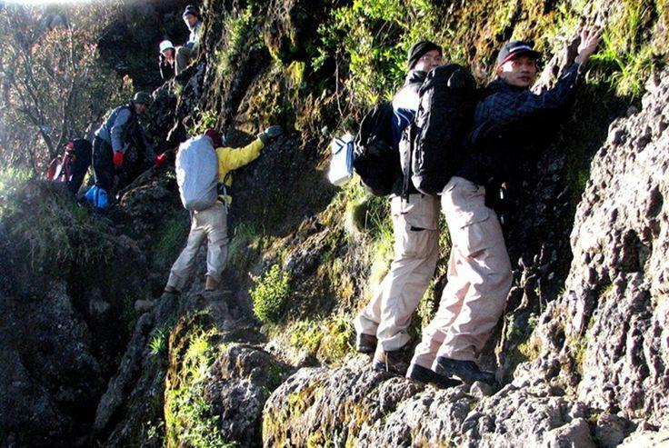Pendakian Gunung Merbabu