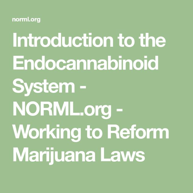 Introduction to the Endocannabinoid System - NORML.org - Working to Reform Marijuana Laws