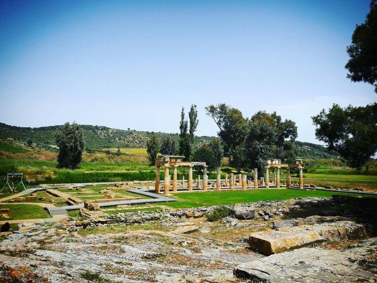 Αρχαιολογικός χώρος Βραυρώνας