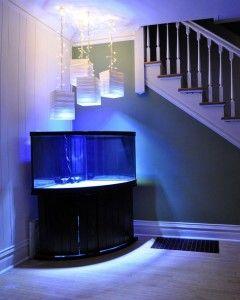 Exocotic Par 38 LED Marine Aquarium Spotlight Bulbs, Ikea paper lantern fixtures, christmas lights.