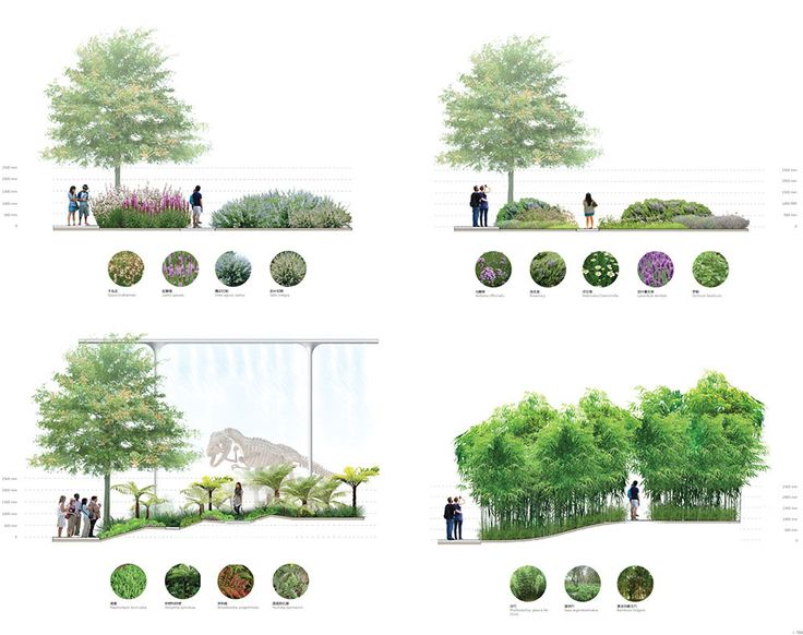 Way to show all the different areas and plants involved in the landscape
