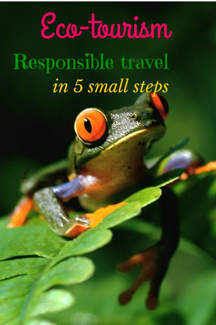 #Eco_tourism and responsible traveling in 5 small steps