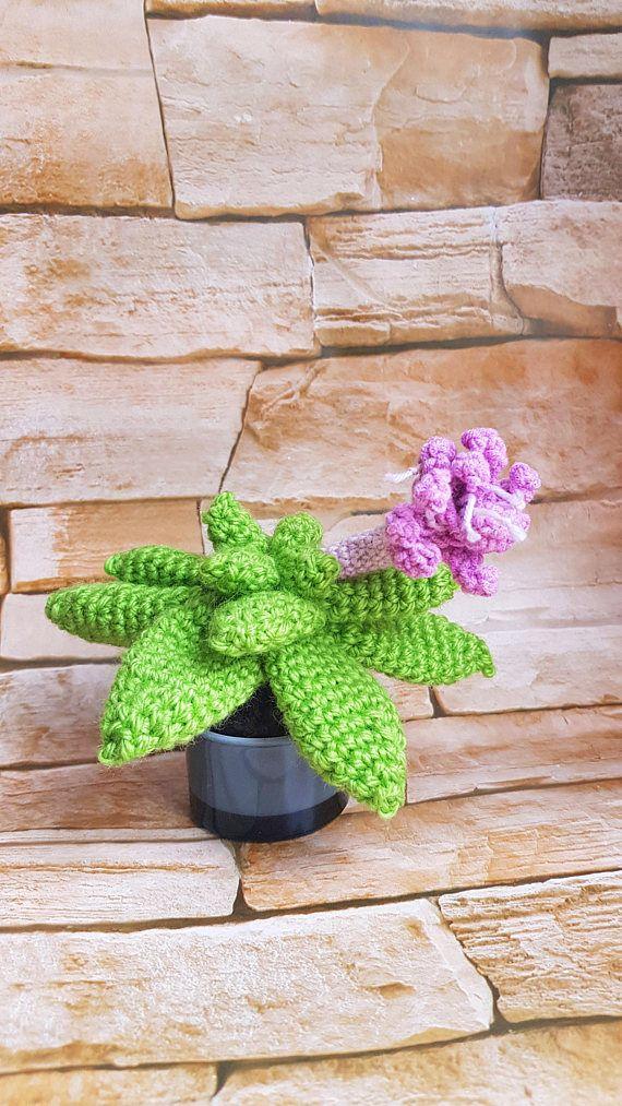 Handmade Succulent Home Plant Crochet Succulent Purple Flower