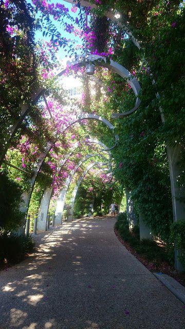 サウスバンクパークランドは緑のトンネルが、穏やかに過ごしたい時に◎ブリスベン 旅行・観光のおすすめスポット!