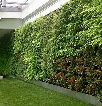 1000 Ideas About Vertical Garden Systems On Pinterest
