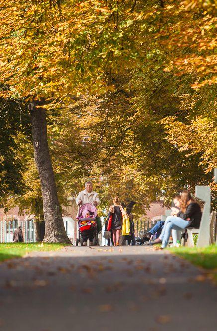 Poznan Poland, park przy Starym Browarze [fot.Jakub Wittchen]