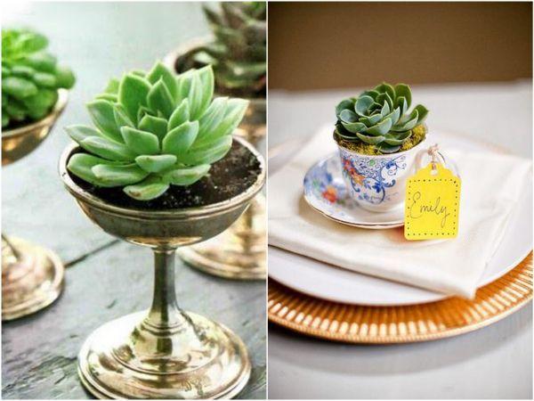 10 ideias de suculentas como lembrancinha de casamento | http://blogdamariafernanda.com/suculenta-lembrancinha-casamento