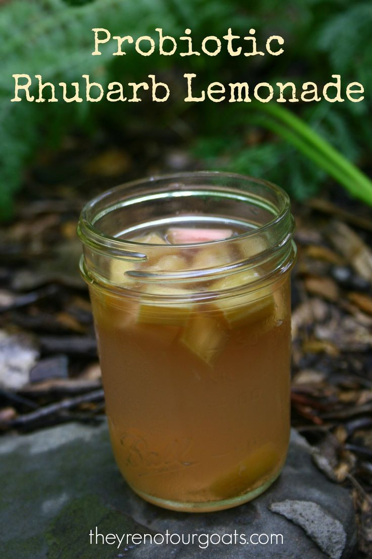 A delicious way to get your daily probiotics- fermented rhubarb lemonade!
