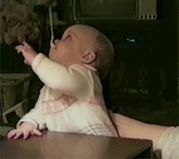 baby funny gif. Baby reaction learning how spoons work. First time eating alone. Cute, funny, baby, gif. Reaction Gifs