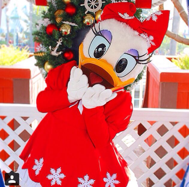 17 Best Images About Daisy Duck On Pinterest Disney