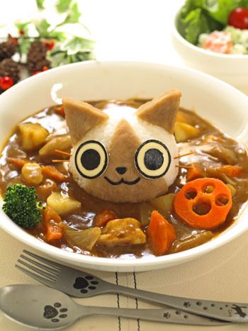 Airou rice curry-- I don't know that I could eat this with it staring at me like that
