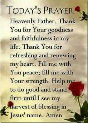 (TODAY'S PRAYER) Heavenly Father, Thank You for Your goodness and faithfulness in my life. Thank You for refreshing and renewing my heart. Fill me with Your peace; fill me with Your strength. Help me to do good and stand firm until I see my harvest of blessing in Jesus' name. Amen