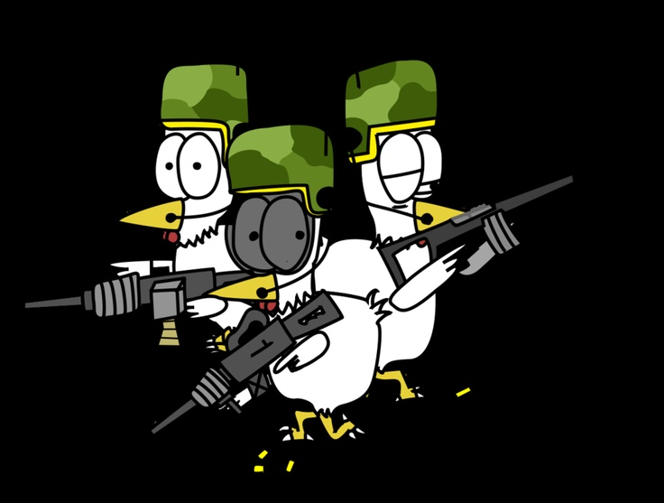 Army chickens!