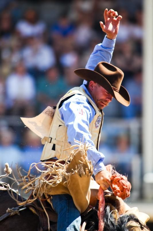 There is nothing more exciting than watching these cowboys and their phenomenal skill at the Calgary Stampede!