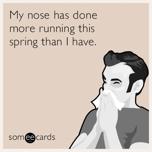 My nose has done more running this spring than I have. Wedding EcardsGreeting  Cards BirthdayCard BirthdayValentines Day EcardsFunny ...