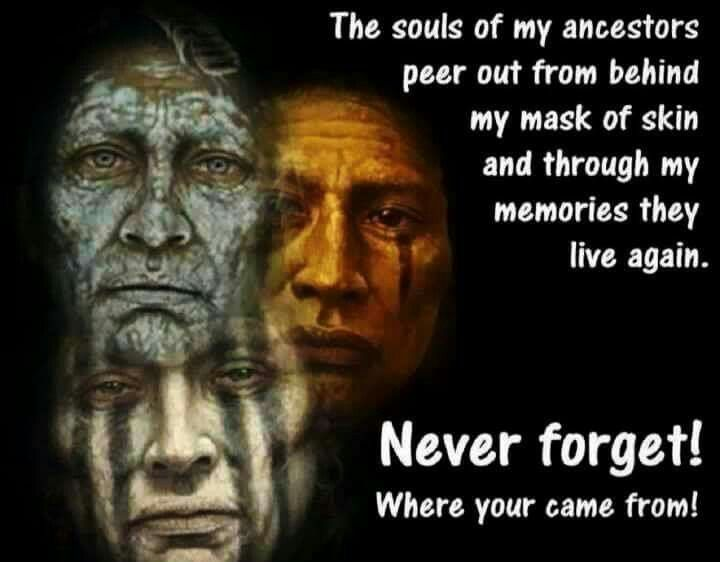 Indian Quotes Endearing 73 Best Native American Quotes Images On Pinterest  Native . Decorating Design