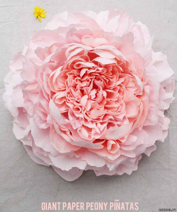 Цветы из конфет и гофрированной бумаги купить самара деревянная напольная подставка под цветы прованс купить в санкт-петербурге