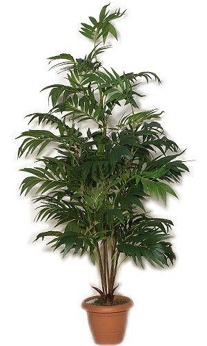 Τεχνητά λουλούδια, άνθη και φυτά - Κατάλογος τεχνητών φυτών, δέντρων θάμνων, τοπίαρι (διαμορφωμένων) εσωτερικού χώρου.