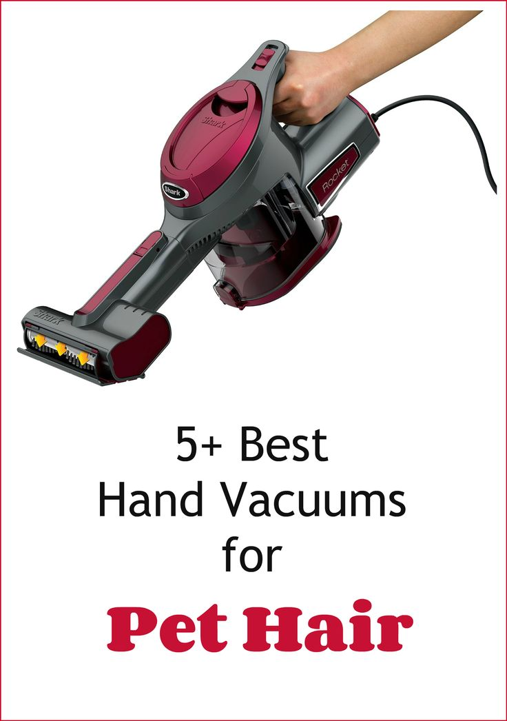 best hand held vacuum need a great vacuum to clean up pet hair a 30636
