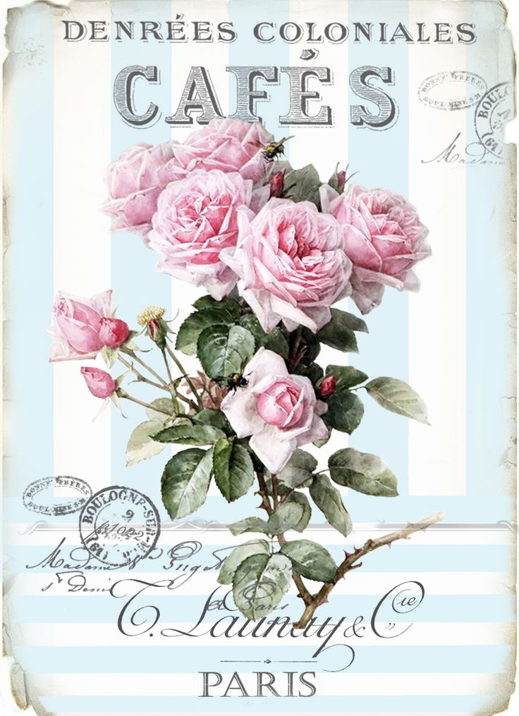 Vintage cafe blue roses digital collage P1022 FREE