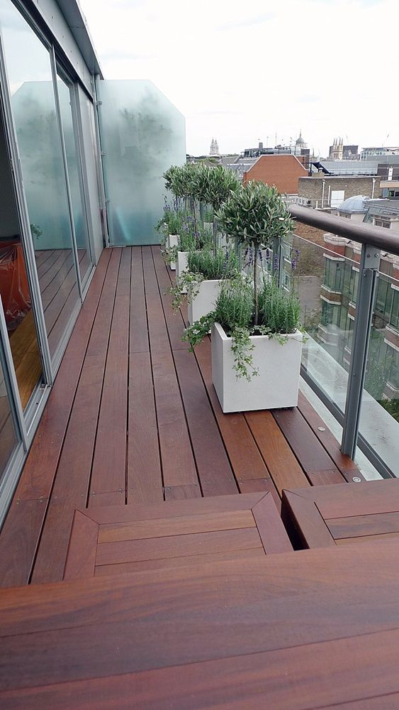 Balcony glass balustrade, planters with olive trees, lavander and ivy