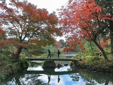 Tokyo Travel: Yoyogi Koen (Yoyogi Park)