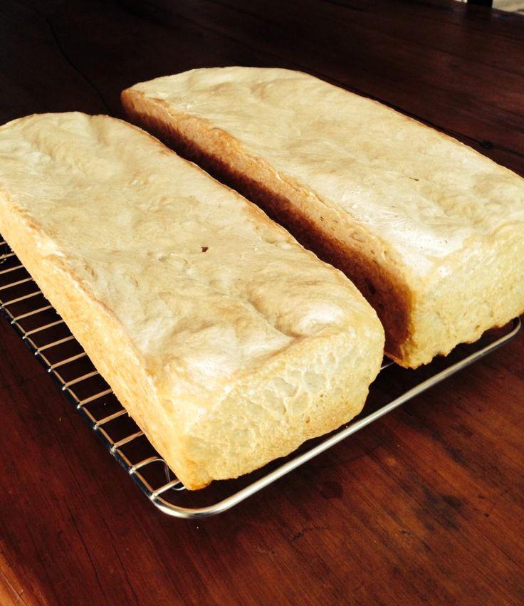 Homemade Chenin blanc bread. Only flour, chenin juice and salt Fermented for three days. Chenin a multi purpose grape
