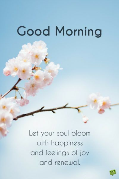 Good morning. Let your soul bloom with happiness and feelings of joy and renewal.