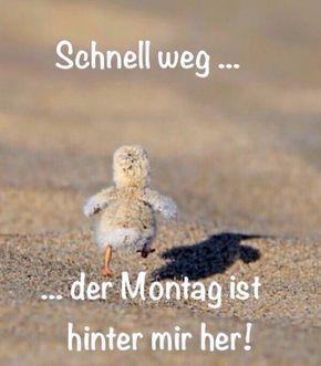 funpot: Schnell weg.jpg von Karsten – Monika Schröder