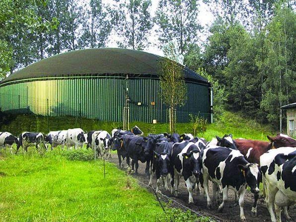 Impianto di Biogas in Ukraina. Biogas plant in Ukraine