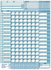 My very favorite little league baseball score sheet.