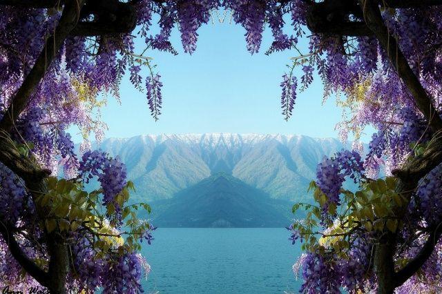 hory, jezero, výhled, krása