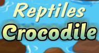 Crocodile Facts Video | Turtle Diary