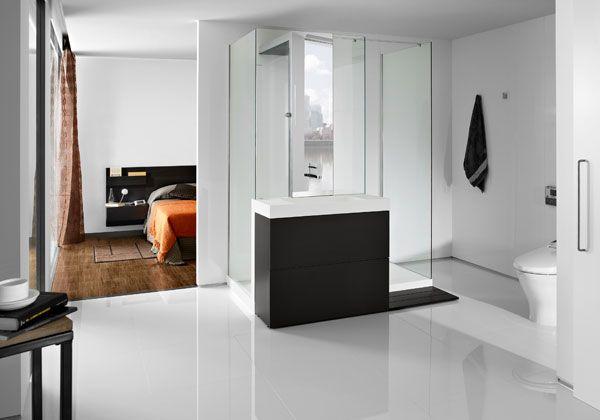 Pi di 25 fantastiche idee su pulizia della doccia su pinterest consigli per la pulizia della - Muffa nella doccia ...