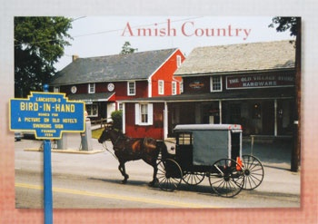 97 Best Images About The Amish On Pinterest Amish Quilts