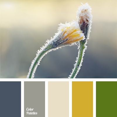 A range of gray shades supplemented with muted yellow and green. This winter palette can be used in sports and everyday winter clothes, both men's and women's.