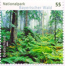 The Bavarian Forest National Park (German: Nationalpark Bayerischer Wald) is a national park in the Eastern Bavarian Forest immediately on G...