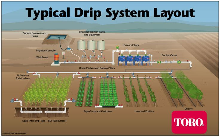 If you've ever wondered how a drip irrigation system works, Toro makes it easy to visualize. A new illustration shows typical drip irrigation layouts with key components for five different types of drip irrigation systems: field crop Subsurface Drip Irrigation (SDI), short-term vegetable crop,