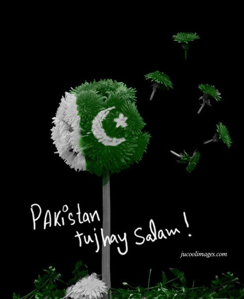 Pakistan Independence day is near...