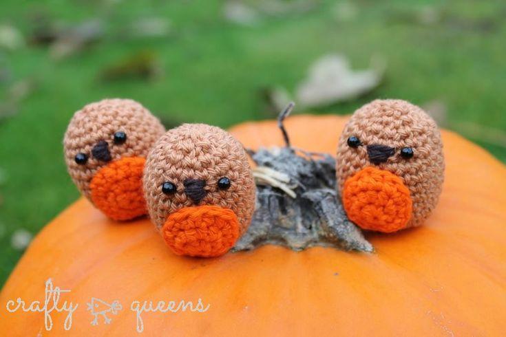 little robins in dutch